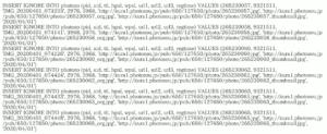 図1.PHP5 mysql_connectでのデバッグ出力例